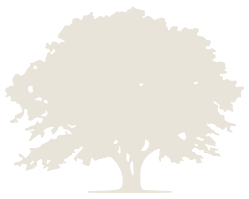 C & K Tree Silhouette